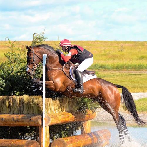 jumping-horse