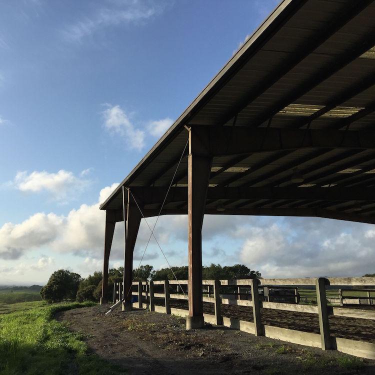 hay-barn